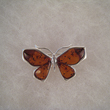 Broche papillon ailes d'ambre